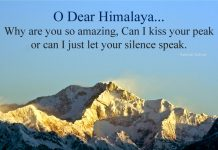 Beauty of Himalaya Quotes